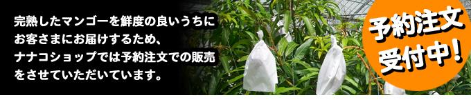 沖縄食材 ナナコショップ